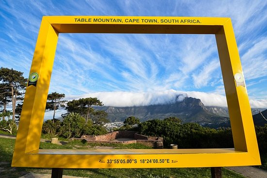 Volunteer for 5 days & 6 days Sightseeing incl Safari, Table Mountain...