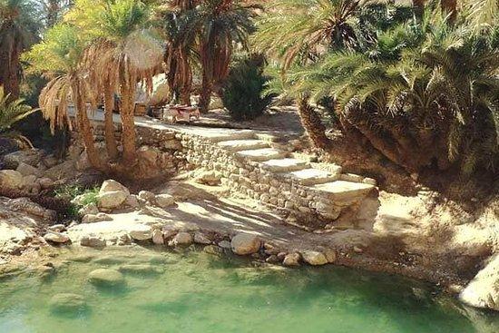 OASIS SAFARI: 2 TAGE Abfahrt Djerba...