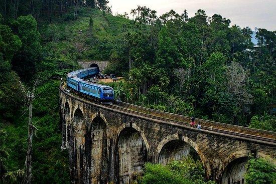 Du nord au centre au Sri Lanka - 11...