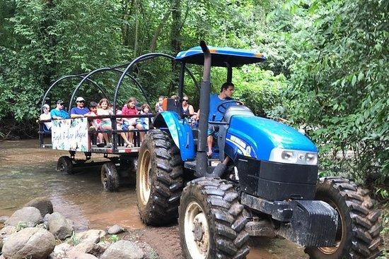 Rain Forest Wagon & Crocodiles Safari...