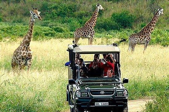 Kaapstad, Aquila Safari Game Reserve ...
