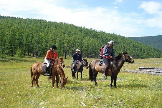 Best of Central Mongolia 3-tägige Tour