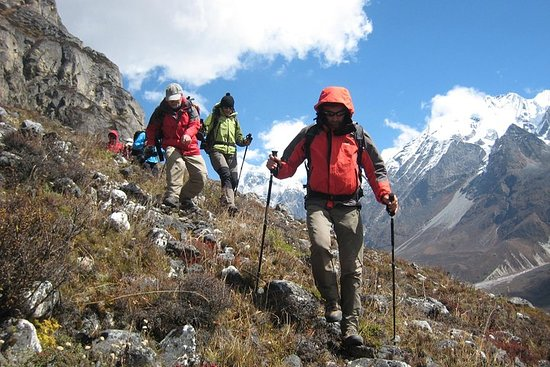 Langtang Valley to Kyanjing Gompa 9...
