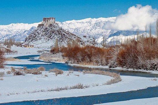 Incroyable hiver Ladakh
