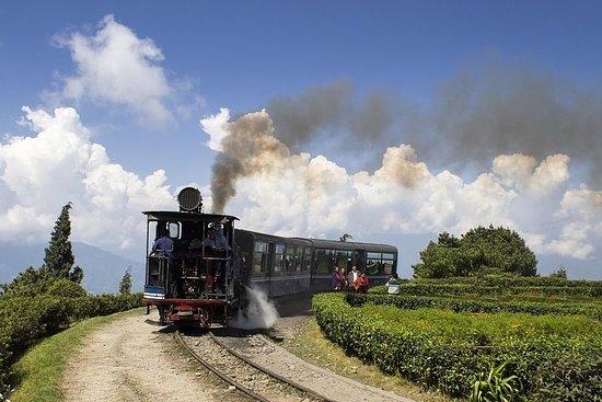 Himalaya orientale (Darjeeling, Pelling, Gangtok e Kalimpong) da