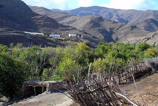 Nuratau thuis blijven observeren en het Oezbeekse plattelandsleven ...