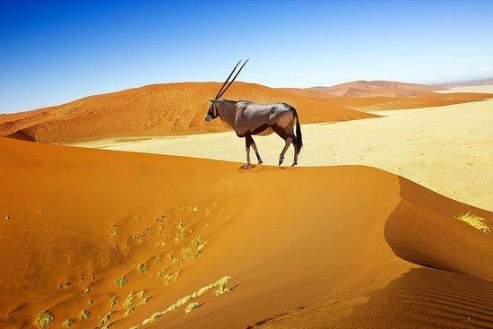 8 dias Sossusvlei, Swakop...