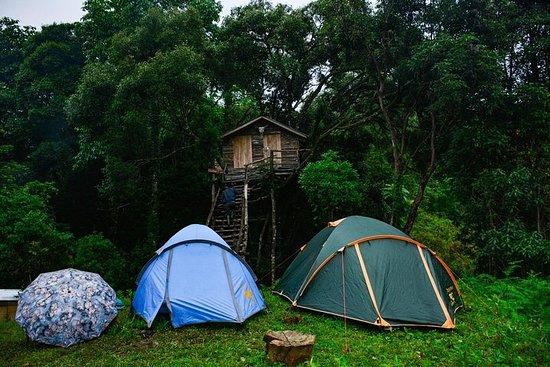 Kohima & Khonoma Camping Tour