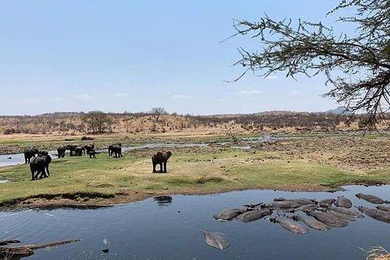 Safari de 3 jours au parc national de...
