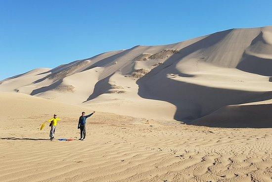 Mystères du désert de Gobi