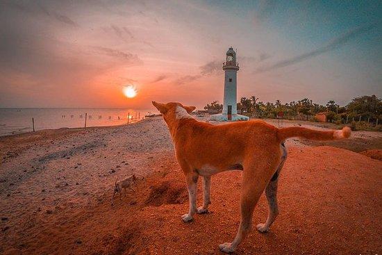 Sri Lanka North Tour