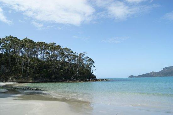 Gita di un giorno a Bruny Island da Hobart