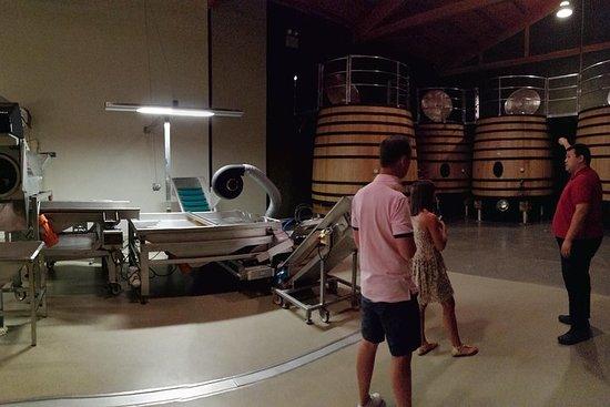 A Day In Rioja From San Sebastian