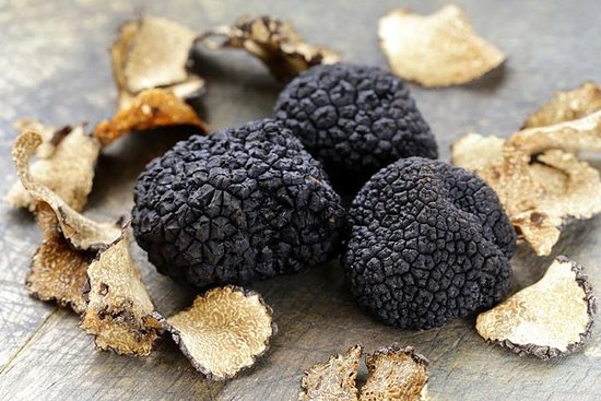 Day Trip: Truffle Hunting With Lunch + Oil Mill Visit With Tasting