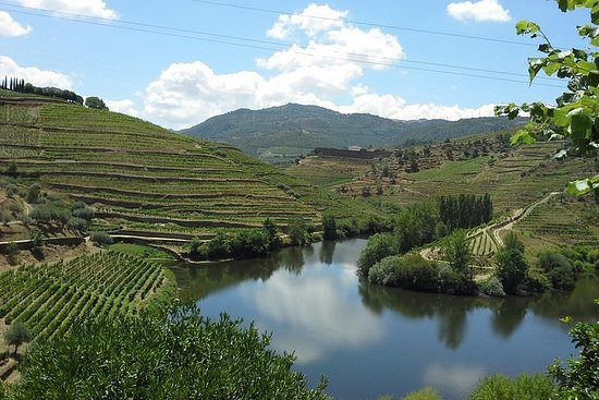 Authentic Douro Valley - small-Group...