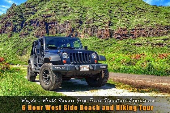 Tour de 6 horas en jeep por el lado...