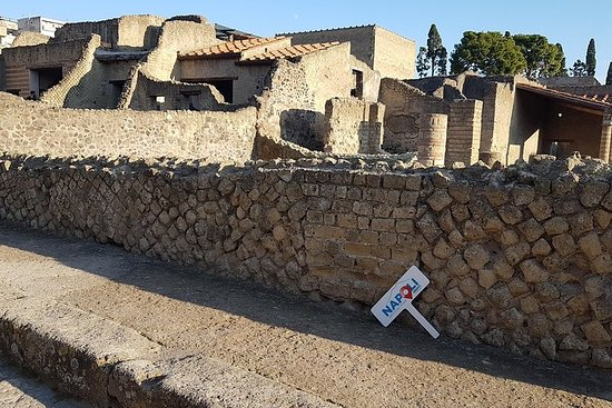 Pompeii and Herculaneum Ruins Guided...