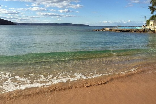 Small-Group Sydney's Northern Beaches and Ku-ring-gai National Park...