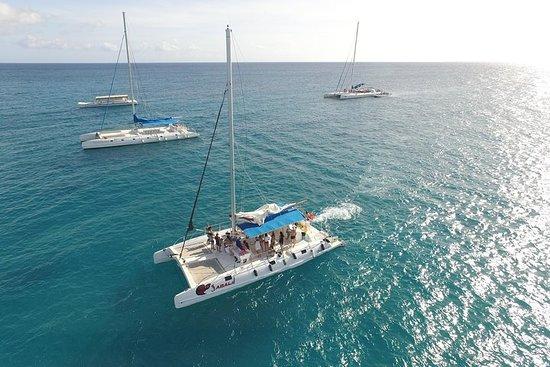 Saona Island Paradise von Punta Cana