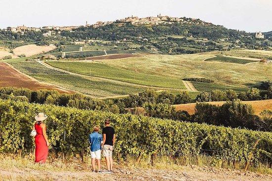 蒙特普齊亞諾的Vino Nobile葡萄酒之旅