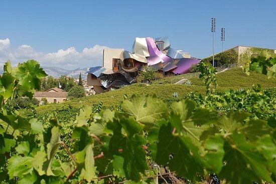 拉里奧哈(La Rioja)兩個釀酒廠以小組遊的方式參觀品酒和品脫啤酒