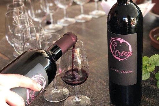 Experiencia del vino canario