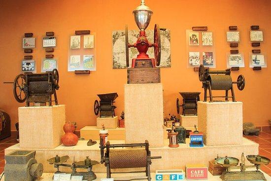 The Authentic 3-Level Experience: City, Village & Pluma Hidalgo