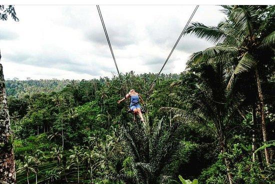 Bali Swing Tour Package – fotografija