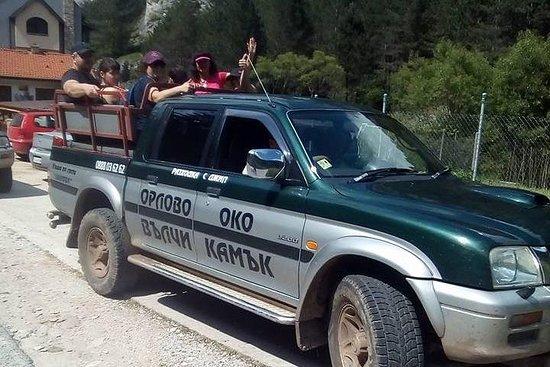 Off-Road Safari