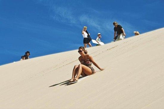 Gemeinsame Wüstensafari, Sandboarden...