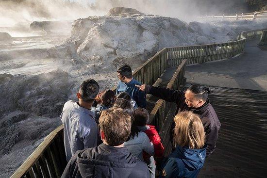 Tour de la ville de Rotorua et du...