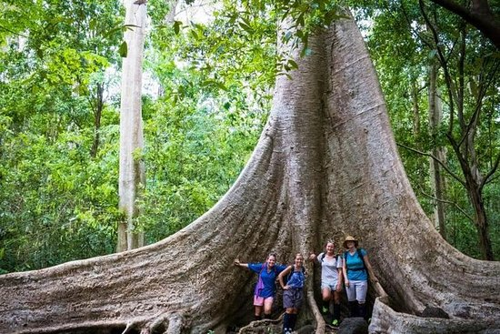 2-dagers Trekking And Discovering Nam Cat Tien nasjonalpark