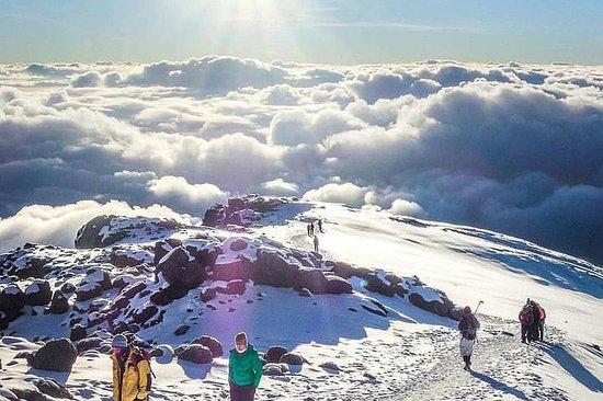 Mt kilimanjaro (highest in Africa) hike 6 days Rongai route – fotografija