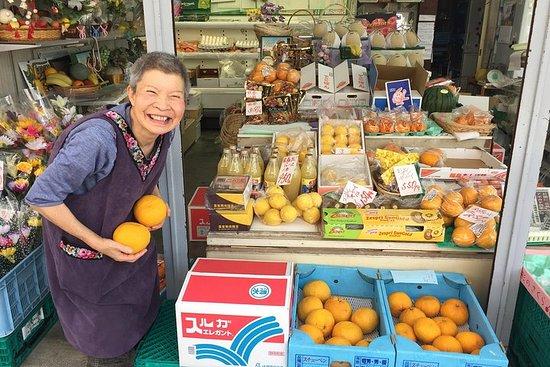 Mt Fuji Lokal mad og kultur Ecotour