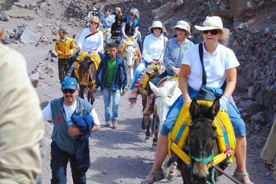 Ouirgane DAy Tur Mule Trek & Berber...