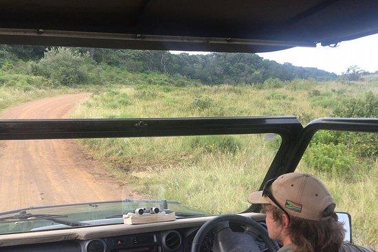 7-dagers Kruger og Swaziland Safari