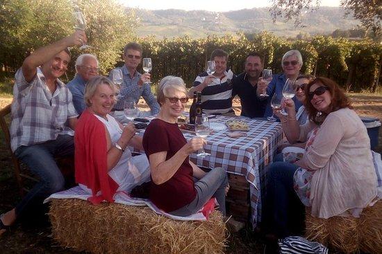 Wijnsafari's naar 'Amore' Abruzzo