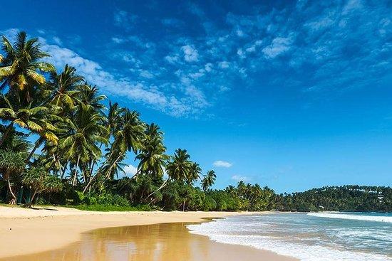 Sri Lanka magnifique