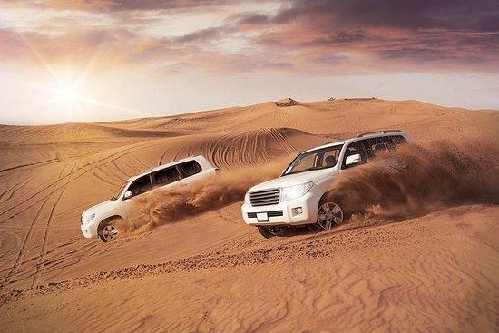 Katar Wüstensafari Expirence.