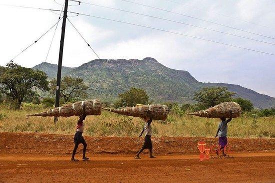 6 Dagen Best Of Kidepo Valley ...