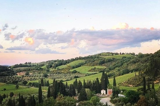 Luksus Overførsler og Tours i Toscana