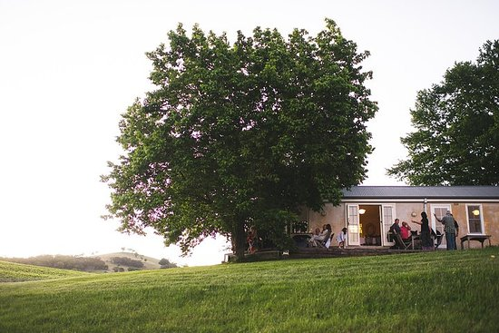 ONTDEK REGIONAAL AUSTRALIË - Onderdompeling in de Orange Wine Region ...