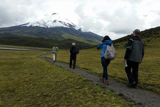 Private Service: 2-Day trip Cotopaxi National Park & the Devil´s Nose...