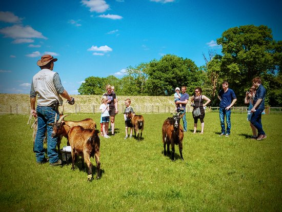 Guillaume présente nos animaux de la ferme.