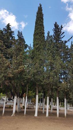 İzmir - Ödemiş İlçesine bağlı Birgi köyünde İmam Birgivi hazretlerinin bulunduğu mezarlık