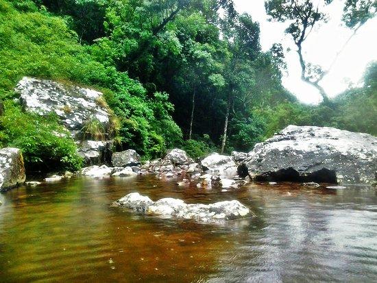 Nascente Rio dos Sinos