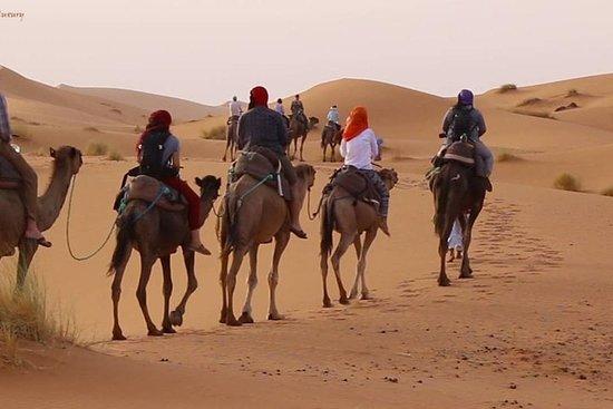 Excursão pelo deserto de Marrakech a...