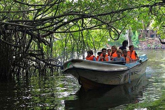 Dagstur til bentota fra Negombo