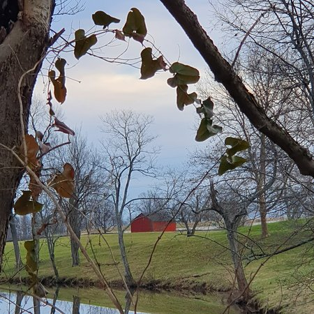 View of the Grounds at Shaker Village