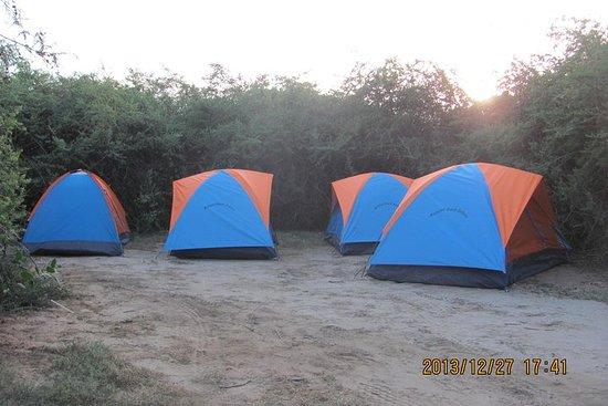 13-dagars Kenya Camping Safari - JEEP ...